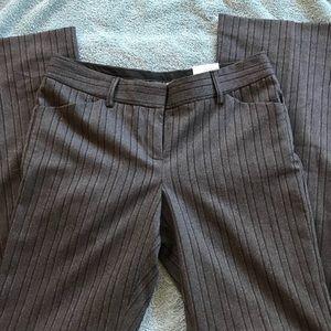 Express Editor Pants